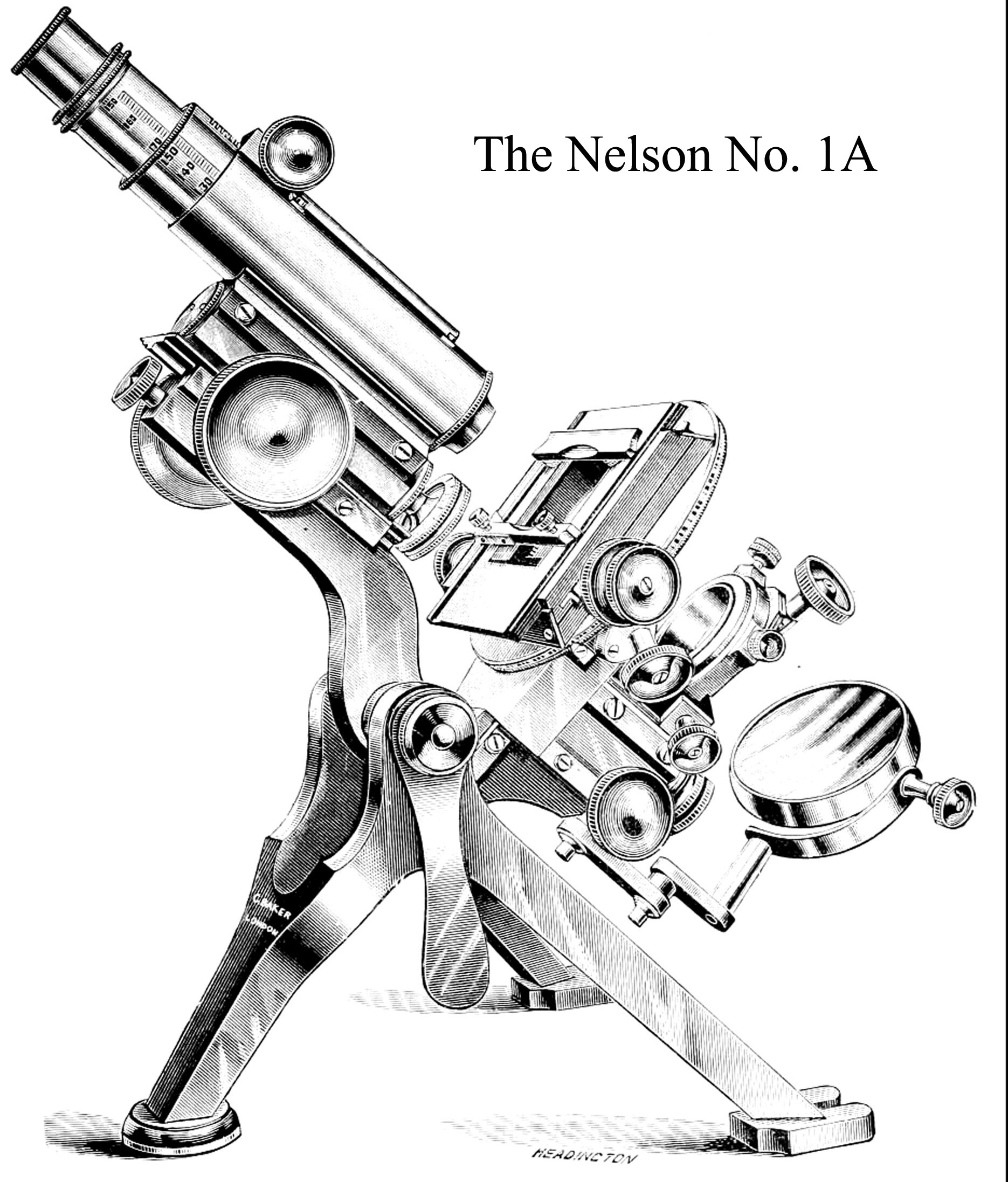 Catalog engraving of Nelson microscope