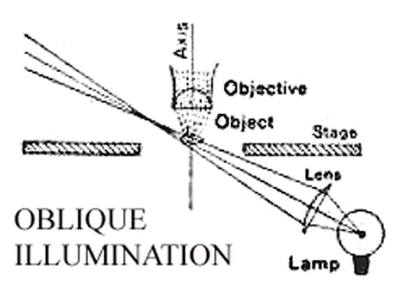 oblique illumination