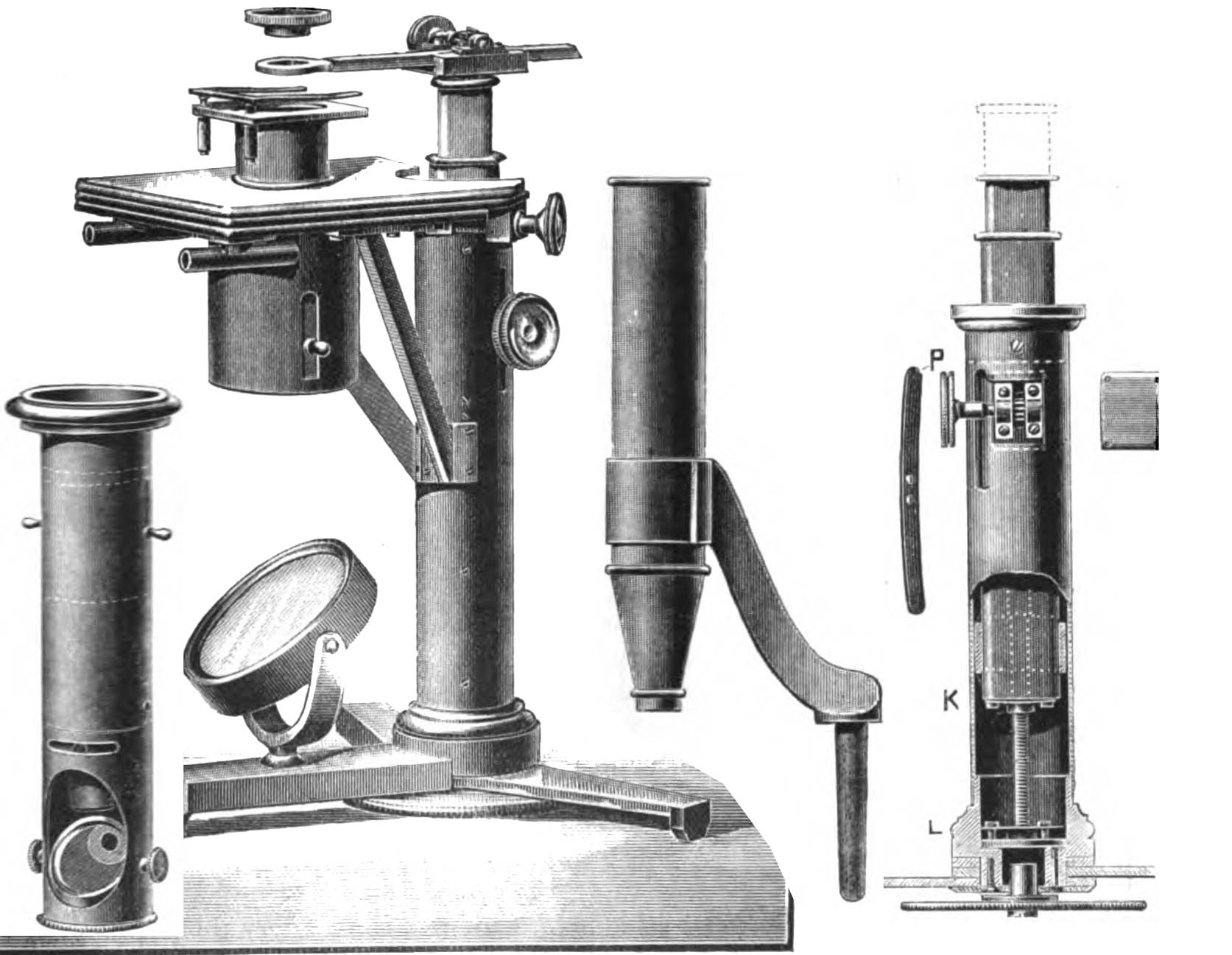 valentine microscope by Ross